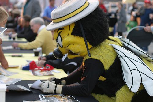"""Stanley Sting!! Sparky is nice but Stanly was just awesome getting a """"buzz' out of the crowd."""