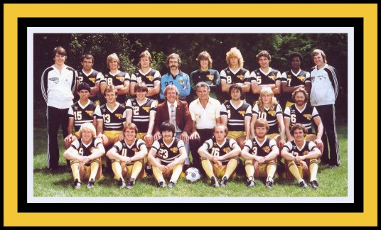 The 1981 Sting: Kings of Chicago (image: NASLmemories.blogspot.com)